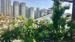 住在頂層,有個漂亮的45㎡露臺花園,宅在家也能欣賞到四季風景