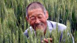 世界微笑日特刊:農民不輕易的笑來自哪裡