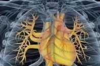 """心臟好的人,身體會有6個表現,養心,遵行""""五個字"""""""