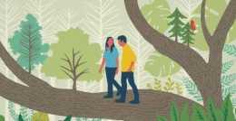 漫步在森林當中為何讓人感覺心情舒暢?