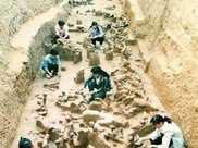 1987年,四川挖出一古墓群,出土一銅桌,上面的青蛙令人不解