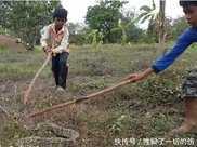 10歲小男孩和小夥伴,暑假期間在野外抓蟒蛇,最後蟒蛇放棄了
