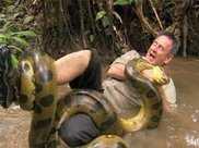 男子野外探險,意外被大蟒蛇纏住,最後的行為救了自己