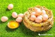 鵝蛋,雞蛋,鴨蛋,哪個營養價值高?希望不要吃錯!